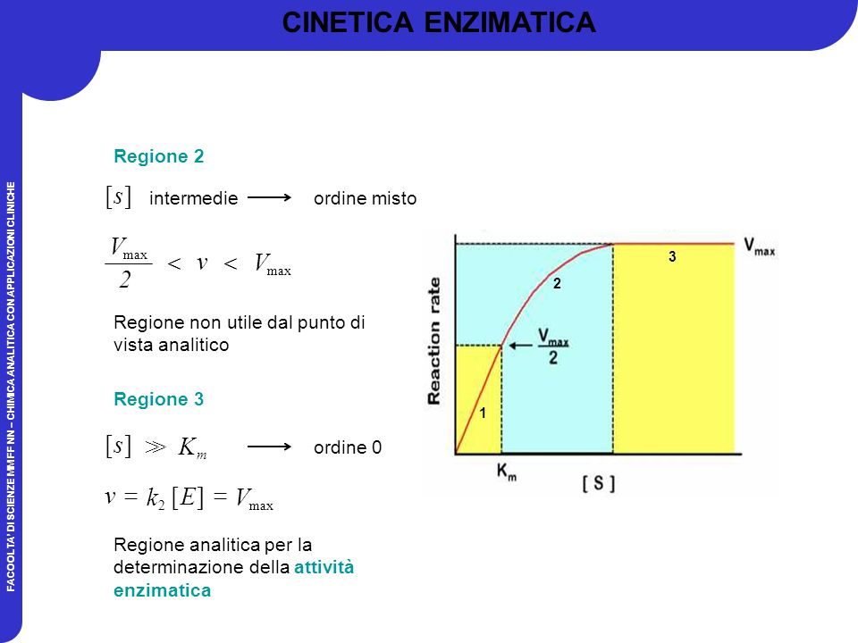 CINETICA ENZIMATICA ] [ s v V  2 ] [ s K > ] [ E k v = V Regione 2